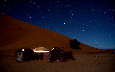 Sahara by Night Photograph by Thomas Young